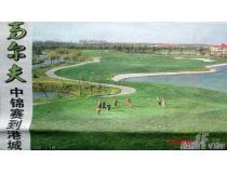 高尔夫中锦赛到港城!