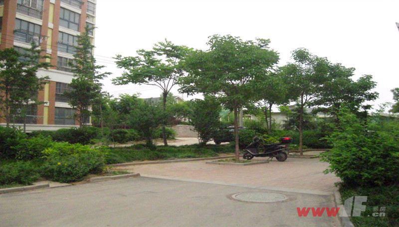 九龙城市乐园小区内绿化