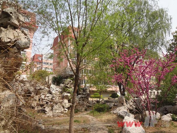 兴业时代花园小区内景观绿化