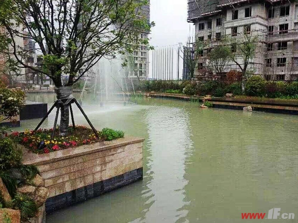 香溢·馥园绿化景观