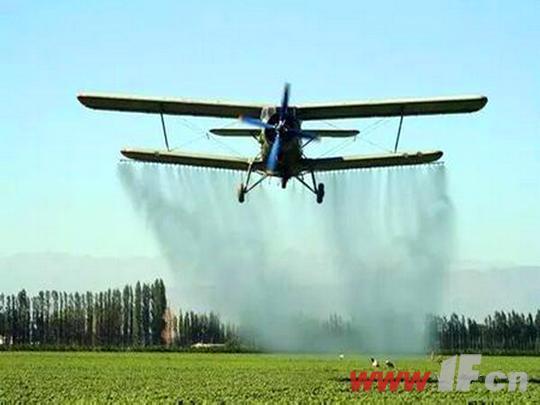 今年我市用飞机喷洒农药防治美国白蛾工作的时间将在