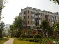 上海之春洋房:墅级空间 生活一步到位