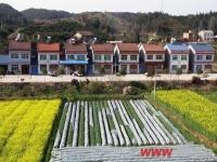 中央:利用农村宅基地建别墅和会馆将被禁