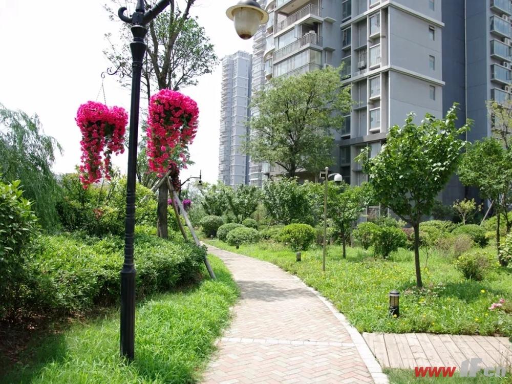 帝豪水榭花都小区内绿化景观