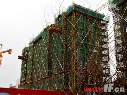 假期这里依旧火 德惠尚书房将推观景楼王-连云港房产网