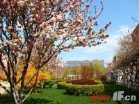 最是一年春好时 东部城区高绿化楼盘盘点