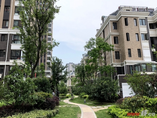 中年男人为爱换房:给你院子里的岁月静好-连云港房产网