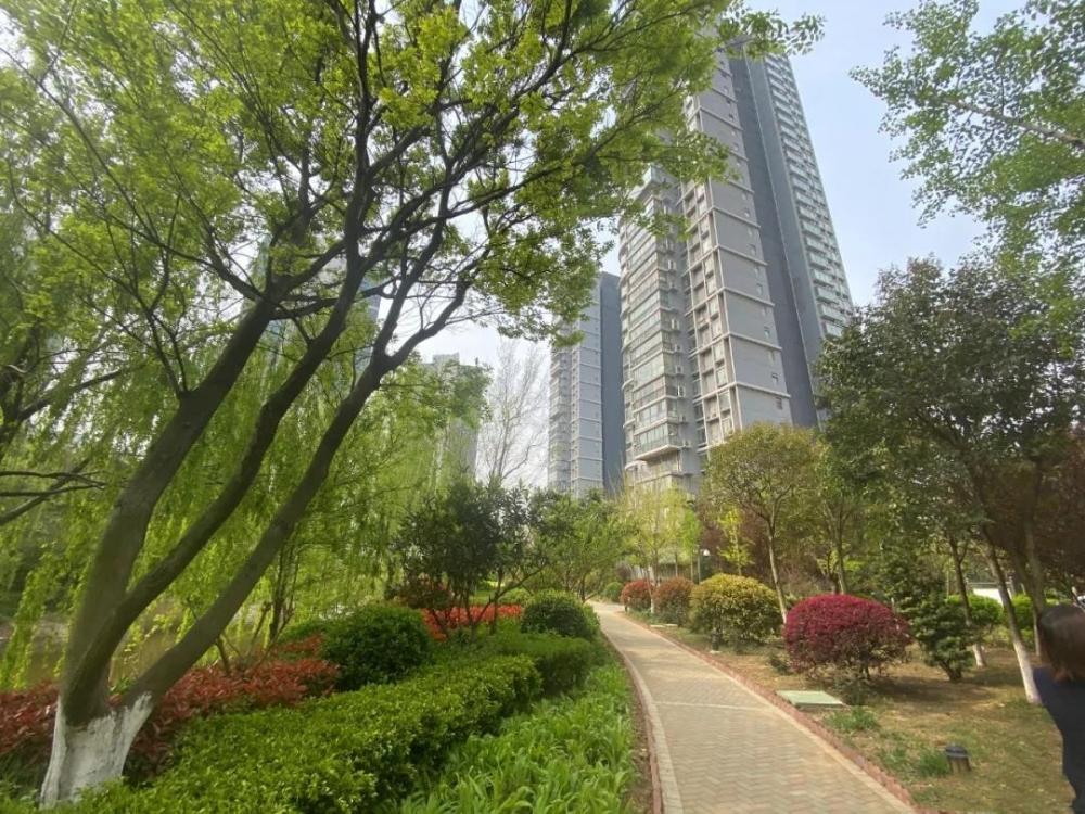 帝豪水榭花都40万米品质楼盘,住宅已进入收官阶段,目前仅剩最后两栋13#、14#楼,珍席递减。