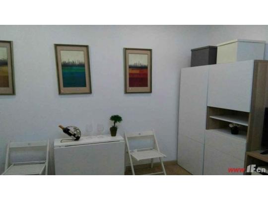 蓝莓公寓精装修,户型方正,价格