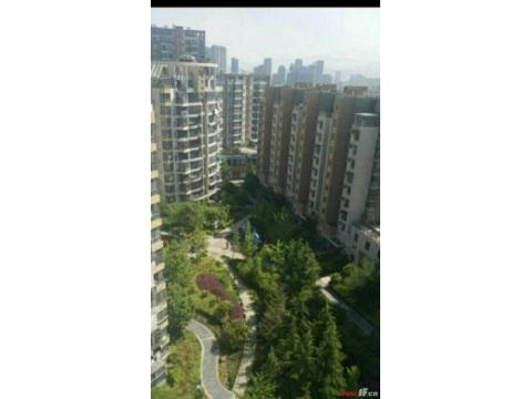 闹市中心高层景观复式 万润怡景苑 中心楼3层复式顶层