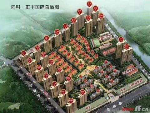 同科汇丰国际 D9号楼一楼带家园 排屋后面全天采光 明珠