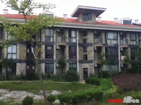 21世纪黄金海岸 投资首选 住宅 70年  40平方 只卖13
